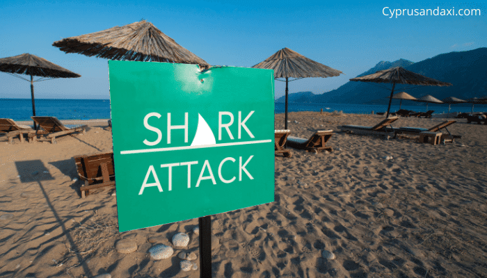 Has there ever been a shark attack in Cyprus