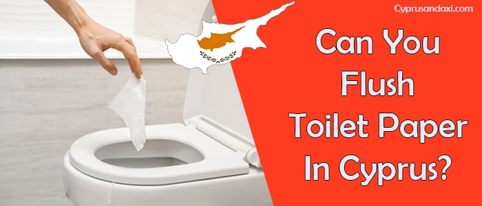 Can You Flush Toilet Paper In Cyprus