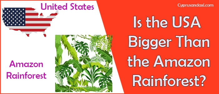 Is the United States of America Bigger Than the Amazon Rainforest